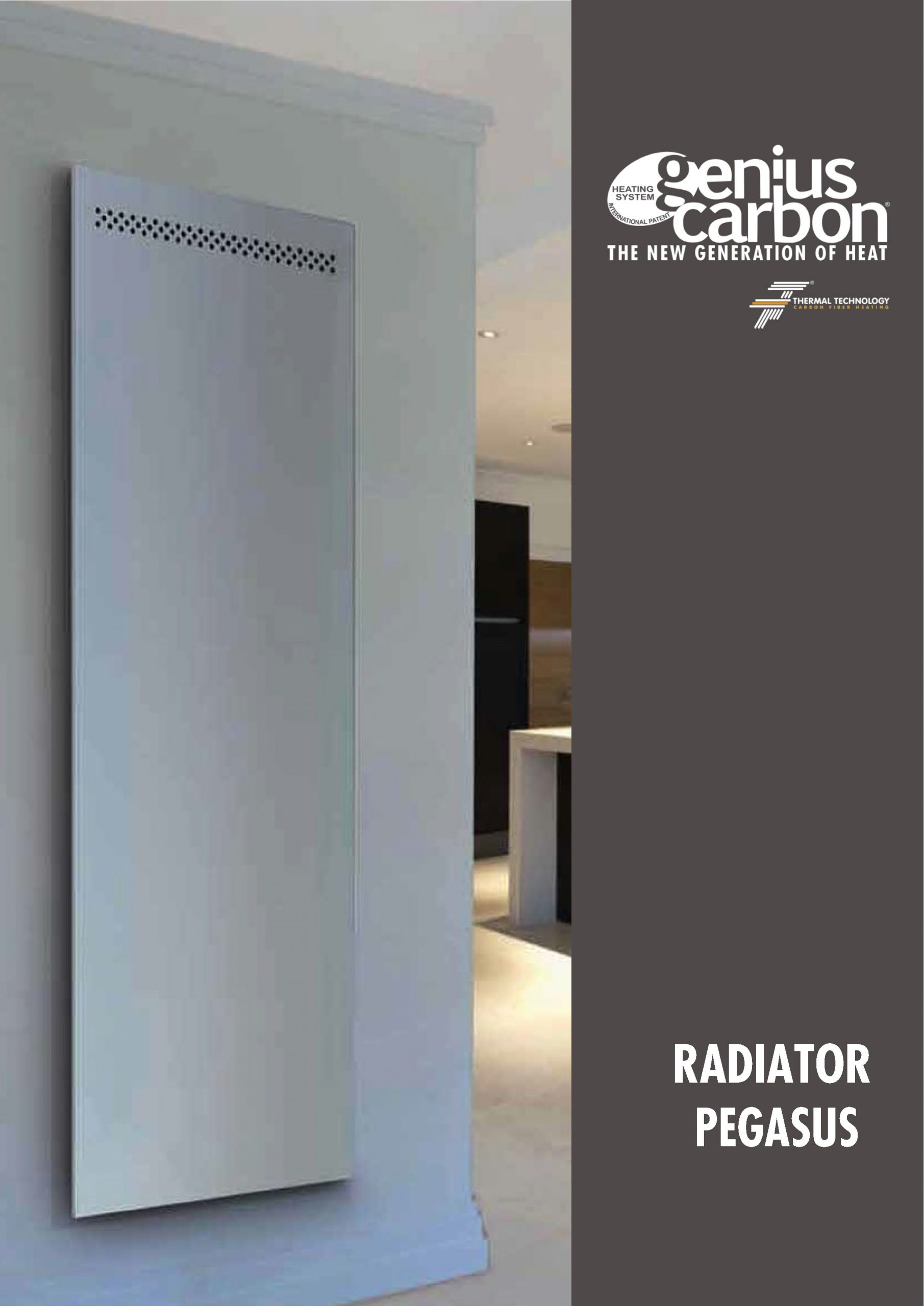 https://thermaltechnology.ro/wp-content/uploads/2020/03/RADIATOR-PEGASUS_RD03_RO_Page_1-scaled.jpg